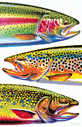 Jon Q Wright Posters - Trout Abstraction Poster by JQ Licensing