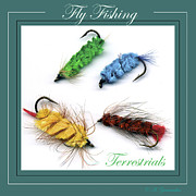 Trout Digital Art - Trout Flies Terrestrials by A Gurmankin