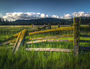 Split Rail Fence Prints - Trout Lake Fence Print by Matt Hoffmann