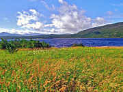 Pond In Park Prints - Trout Pond on a Windy Day in Gros Morne NP-NL Print by Ruth Hager