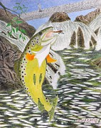 Trout Drawings - Trout Stream In May by Gerald Strine