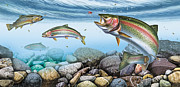 Rainbow Metal Prints - Trout Stream Metal Print by JQ Licensing