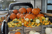 Diane Lent - Truck full of pumpkins