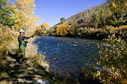 Wade Fishing Metal Prints - Truckee River Fly Fishing Metal Print by Russell Shively