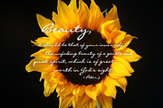 Sunflower Decor Prints - True Beauty Print by Linda Fowler