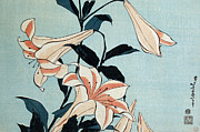 Lillies Painting Prints - Trumpet Lilies Print by Hokusai