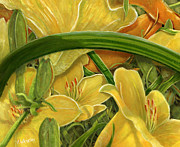 Trumpet Paintings - Trumpet Lily by Vicky Watkins