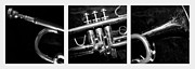 Trumpet Digital Art - Trumpet Triptych by Photographic Arts And Design Studio