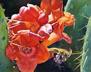 Greeting  Cards. Arizona Paintings - Trumpet Vine and Donkey Ears Cactus by Mary Dove