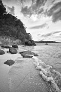 Trunk Pyrography Prints - Trunk Bay Beach - BW Print by Eyzen Medina