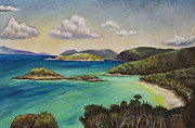 Bay Islands Painting Framed Prints - Trunk Bay Overlook Framed Print by Eve  Wheeler