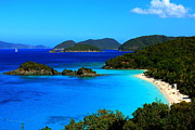 Caribbean Pyrography Prints - Trunk Bay St John US Virgin Islands Print by Justin Bittner