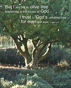 Motivational Sayings Prints - Trust in God Print by Author and Photographer Laura Wrede