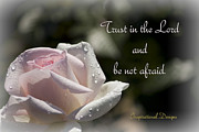 Inspirational  Designs - Trust in the Lord