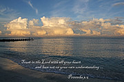 HH Photography - Trust In The Lord ...