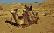 SAHARA Mixed Media - Tuareg camel dressed for travel by Anthony Dalton