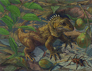 Forest Floor Painting Posters - Tuatara - The Reptilian Time Capsule Poster by ACE Coinage painting by Michael Rothman