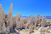 Mono Lake Framed Prints - Tufa Towers Mono Lake Framed Print by Viktor Savchenko