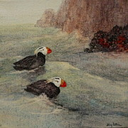 Puffin Paintings - Tufted Puffin Pair by Floy Zittin