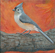 Fran Brooks - Tufted Titmouse Autumn