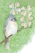 Titmouse Paintings - Tufted Titmouse by Ellen Miffitt