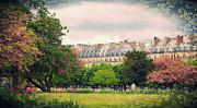 Tuileries Posters - Tuileries Gardens with Damask Texture Poster by Heidi Hermes