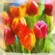 Tulip Mixed Media - Tulip Art by Lutz Baar