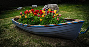 Mitch Shindelbower Prints - Tulip Boat Print by Mitch Shindelbower