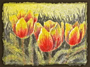 Carolyn Rosenberger - Tulip Time