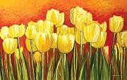 Ahmed Amir Prints - Tulips Print by Ahmed Amir