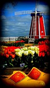 Tulips And Windmill Print by Susan Garren