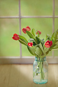 Mason Jars Posters - Tulips in Mason Jar Poster by Kay Pickens
