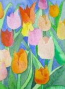 Apricot Originals - Tulips multicolor by Christina Rahm Galanis