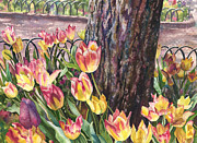 Anne Gifford - Tulips on the Mall