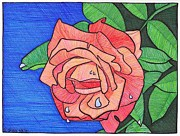 Rain Drop Drawings Prints - Tulsa Rose Print by Rebecca Jayne