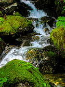 Beautiful Creek Posters - Tumbling Stream Poster by Robert Bales