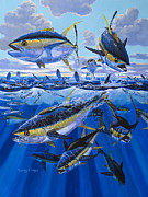 Yellowfin Painting Prints - Tuna rampage Off0018 Print by Carey Chen