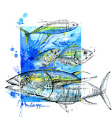 Tuna Metal Prints - Tuna Run Metal Print by Amber M  Moran