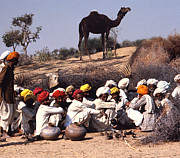 Ellin Pollachek - Turbans and a Camel