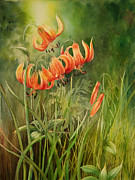 Turk Painting Originals - Turks Cap Lilies by Johanna Axelrod