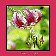 Turban Digital Art Framed Prints - Turks cap Lily Poster Image Framed Print by A Gurmankin