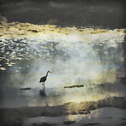 Gray Heron Photos - Turning of the Tide by Carol Leigh