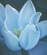 Waterlily Poster Posters - Turquoise waterlily Poster by Christina Rahm Galanis