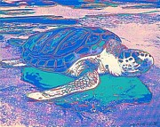 Andy Warhol - Turtle