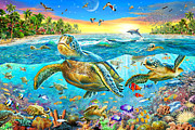 Turtle Cove Print by Adrian Chesterman