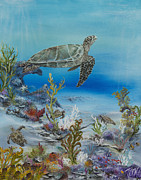 Hawaii Sea Turtle Paintings - Turtle Haven by John Garland  Tyson