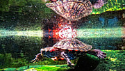 Buy Art Photo Prints - Turtle Reflections - Art by Sharon Cummings Print by Sharon Cummings