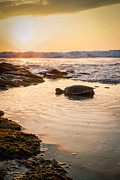 Turtle Sunset3 Print by Chris Lindner