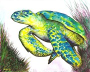 Hawaii Sea Turtle Paintings - Turtle Wonder by Frances Ku