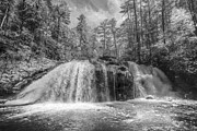 Sepia White Nature Landscapes Prints - Turtletown Creek in Black and White Print by Debra and Dave Vanderlaan